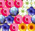 Çiçek Partlat